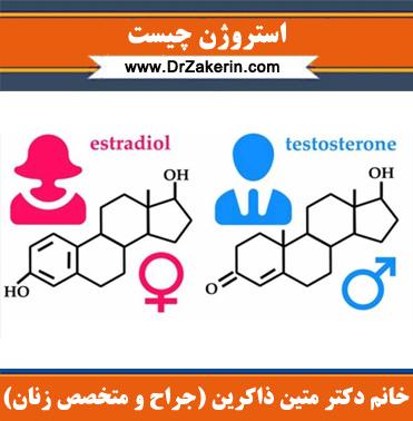 استروژن چیست
